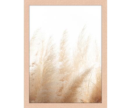 Stampa digitale incorniciata Pampa Grass